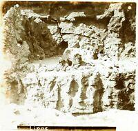 FRANCE Paris Zoo Lions, Photo Stereo Vintage Plaque Verre VR7L7