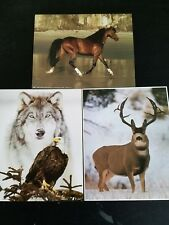 "3- 8"" X 10"" Elk, Horse & Wolf w/Eagle Picture Prints in Lithograph by Dealer"