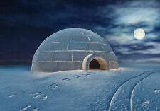 GUIDED MEDITATION CD, FIND YOUR OWN IGLOO ON AN ARCTIC PLAIN, NORTHERN LIGHTS