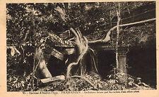 Angkor Thom,Cambodia,Southeast Asia,Prah-Khan,# 91,c.1909