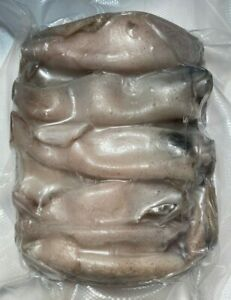 Tintenfisch Calamar Congelado ca. 20-25 St. 1kg (100g/2,99€) Wels Waller Hecht