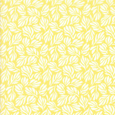 BOLT END 74cm Yellow Ochrel Fiori Grand Canal Kate Spain Moda Quilting Cotton