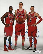 Zach LaVine, Kris Dunn & Lauri Markkanen signed Chicago Bulls 8x10 photo JSA