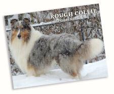 Rough Collie Dog Calendar 2021