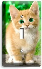 CUTE GREEN EYES KITTEN KITTY CAT SINGLE LIGHT SWITCH WALL PLATE COVER  ROOM ART