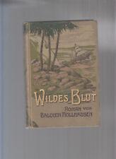 Balduin Möllhausen Reisen und Abenteuer Leipzig 1912 3.Serie Bd.1 Wildes Blut