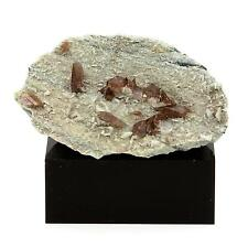 Axinite. 365.9 cts. La Balme d'Auris, Bourg d'Oisans, Isère, France. Rare