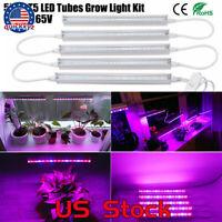 Hydroponic Plant Vegetables Seeding Growing 30W 5XT5 Tube LED Grow Light Kit US