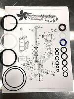 BRP Johnson Evinrude 40 48 50 HP Seal Kit TNT Tilt Trim System 435567 OMC