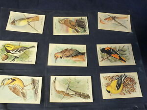 VINTAGE-ARM & HAMMER BAKING SODA CARDS-30 CARDS-SERIES 9 & 10