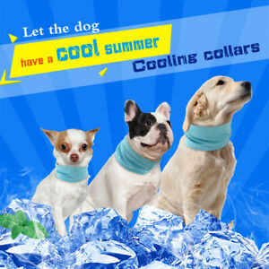 Pet Dog Summer Cooling Collars Ice Cold Breathable Bandana for Small Large Dogs