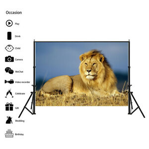 The Lion Animal Photography Background Wall Backdrop Prints Decor AA1