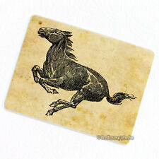Horse #2 Deco Magnet, Decorative Gift Fridge Refrigerator Animal Illustration