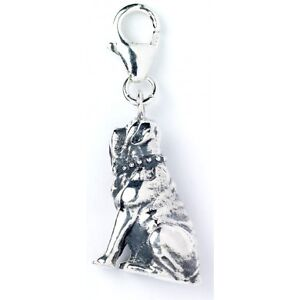 NEW Official Licensed Harry Potter St. Silver Hagrids Dog Fang Clip On Charm