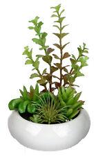 Deko Blumen Kunstliche Pflanzen Mit Kaktus Aus Kunststoff