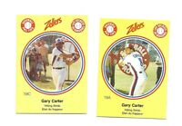 VERY RARE 1982 MONTREAL EXPOS GARY CARTER PRO TIPS CARD LOT