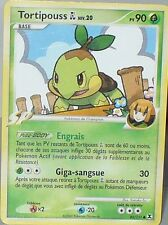 CARTE POKEMON UNCO RIVEAUX EMERGENTS  TORTIPOUSS 85/111  90 PV