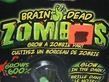 Glow in the Dark Zombie Brain Dead Zombies Grow A Zombie Part Monster Toy
