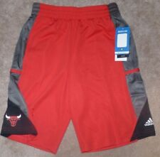 NEW NBA ADIDAS Chicago Bulls Shorts Youth Boys M Medium 10 12 NEW NWT