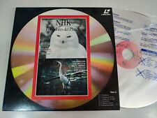 Nhk la Chouette Finlandais Grues de Sibérie Hippo - Laserdisc Ld