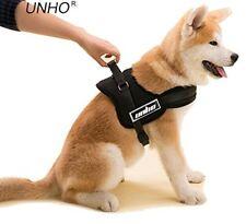 Articles noirs pour chien sans offre groupée personnalisée