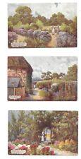Vintage Tuck's Oilette postcard set x 6 all 'A Hampshire Garden' series, 1907