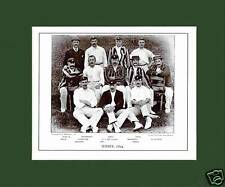MOUNTED CRICKET TEAM PRINT - SURREY - 1894