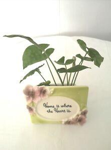 Green & White Ceramic Flower Planter Vasese (Home Is Where The Heart Is)