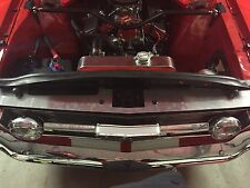 Ford Mustang 66 Radiator Fill In Panel (show Panel,pony,gt,Shelby,engine Bay,