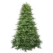 7.5 ft. Pre-Lit LED Royal Fraser Fir Artificial Christmas Tree Warm White Lights