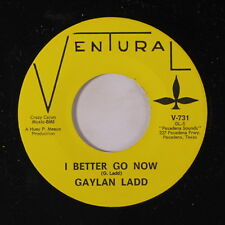 GAYLAN LADD: I Better Go Now / Painted Lady 45 Rock & Pop