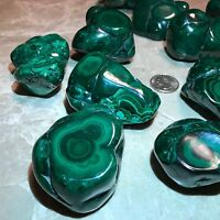 Polished Malachite Specimen - Congo  ~ (1/4) Pound Specimen - Stunning Color