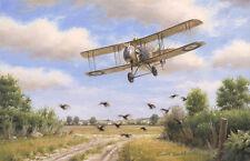 Airco DH2 James McCudden RFC WWI Plane Aviation Aircraft Painting Print