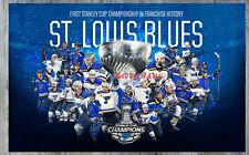 NHL 2019 Stanley Cup Champion St. Louis Blues  Color 8 X 12 Photo Picture