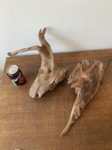 Driftwood Pieces x2 natural  l ong pointed sculptures.  vivarium . Bogwood