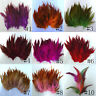 50/100PCS Beautiful Rooster Tail Feathers 4-6 Inches/10-15CM