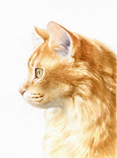 """8 x 6"""" Custom Watercolour Pet Portrait - any pet painted from your photos"""