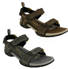 Clarks Men S Sandals And Beach Shoes Ebay
