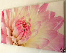 PINK  FLOWER WALL ART CANVAS PICTURE LARGE 18 X 32 INCH FRAMED PRINT