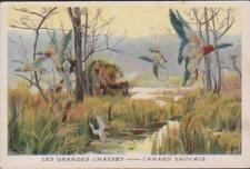 CHROMO ANCIEN IMAGE RECOMPENSE-LES GRANDES CHASSES-CANARDS SAUVAGES