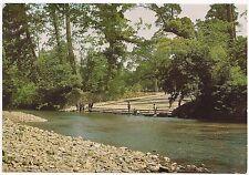 Japan Isuzu River Ise-Shima National Park Oversized Postcard 7 x 5