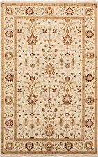 Indian,fine,hand knotted,traditional,100% wool rug,beige,brown&Ivory, 269 x 183M