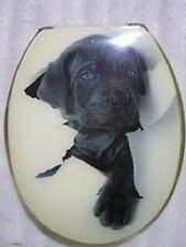Loo with a View - Cute Puppy, Poly Resin Decor Toilet Seat, EU133
