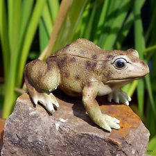 Frosch gartenfiguren skulpturen g nstig kaufen ebay for Beleuchtete gartenfiguren