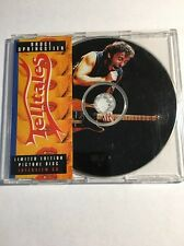 Bruce Springsteen Limited Ed, Picture Disc CD, Telltales, 1989 Rare Interview