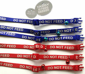 """CAT COLLARS REFLECTIVE """"DO NOT FEED"""" WRITING with or without ENGRAVED TAG pet"""