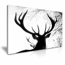 ANIMAL DEER Stag CANVAS WALL ART PICTURE PRINT A1 dimensioni 76cmx50cm