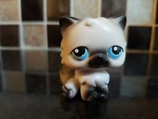 Littlest Pet Shop # 60 Grey Black & White PERSIAN CAT  ~  Excellent condition...