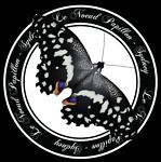 Le Noeud Papillon
