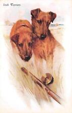 Irish Terrier Dogs Fishing Pole Artist Signed Postcard (c. 1910)